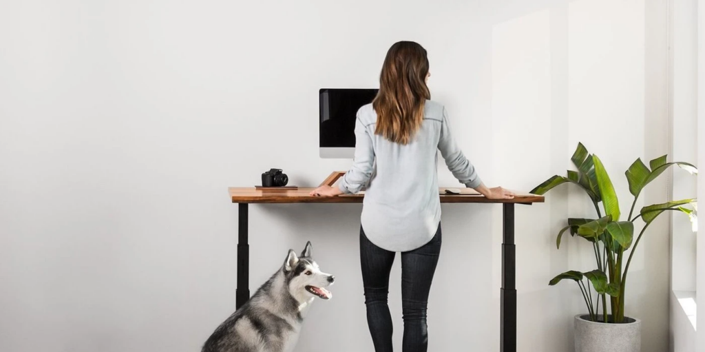 The best WFH sit-stand desk Ergonofis VS Uplift VS Fully